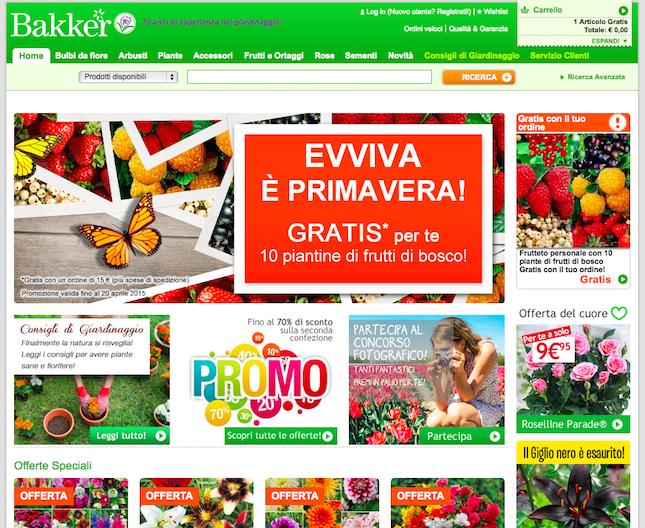 Bulbi piante e rose acquisti online the shopping corner for Acquisti online casa